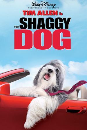 Điệp Vụ Chó Xù - The Shaggy Dog