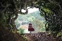 'Into The Woods' - Thế giới cổ tích đầy mê hoặc