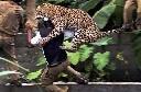 Rùng rợn những pha động vật tấn công con người (Phần 1)