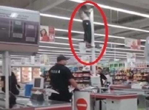 Tên trộm ngớ ngẩn trèo lên cột để trốn cảnh sát