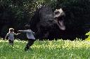 Khóc thét khi gặp khủng long trong rừng sâu