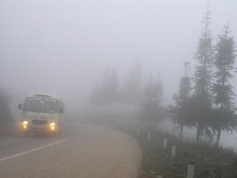 Sương mù dày đặc, ôtô 'hôn' đuôi xe tải hàng loạt