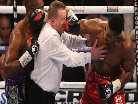 'Cười rớt hàm' với 5 võ sỹ quyền Anh hạ gục trọng tài giữa trận đấu