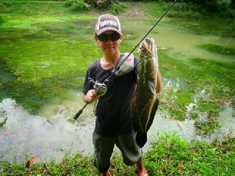 Dùng cá sắt làm mồi câu cá thật