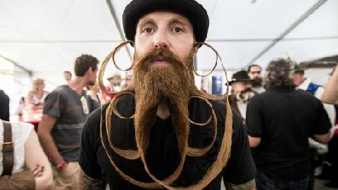 Hội thi Râu kỳ lạ ở Pháp