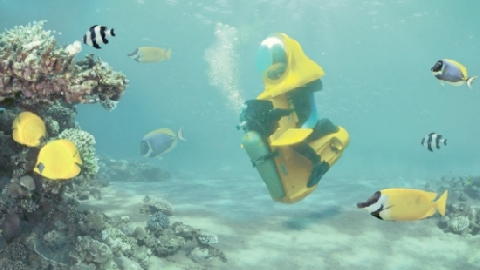 Du khách lái xe dưới đáy biển giữa đàn cá