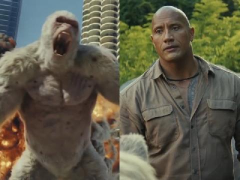 Nghẹt thở xem 'The Rock' đối đầu khỉ khổng lồ
