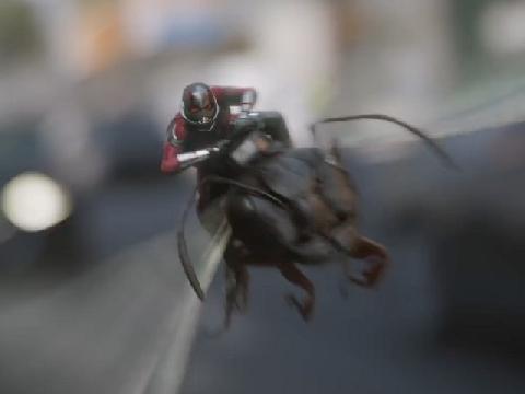'Người Kiến 2' công bố trailer đầu tiên