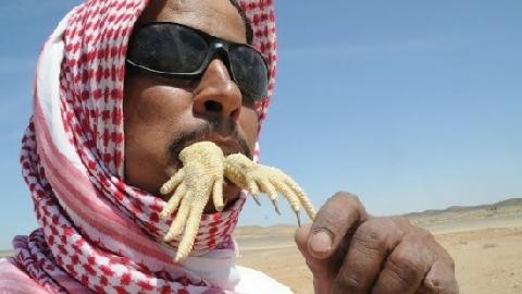 Ăn sống thằn lằn đuôi gai và 10 món ăn kinh dị nhất thế giới