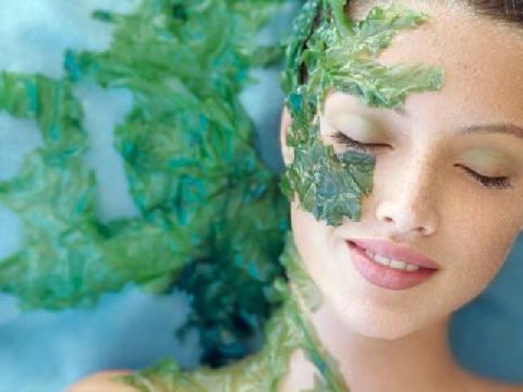 """Tận mắt công nghệ """"cấy tảo xoắn"""" để làm đẹp"""