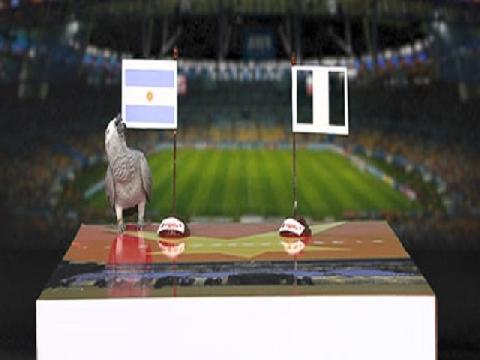 Vẹt Natasha dự đoán trận Nigeria - Argentina