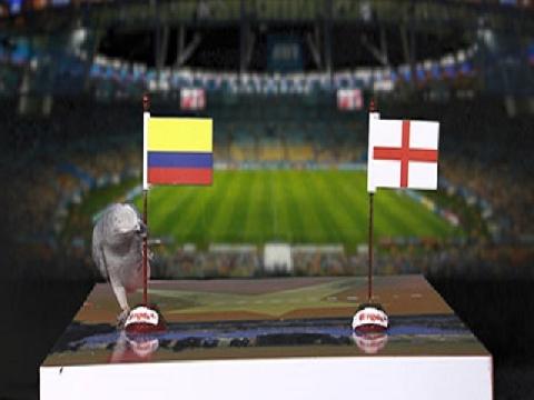 Vẹt Natasha dự đoán trận Colombia - Anh