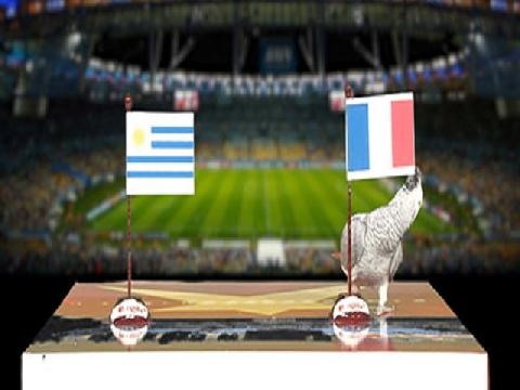 Vẹt Natasha dự đoán trận Uruguay - Pháp