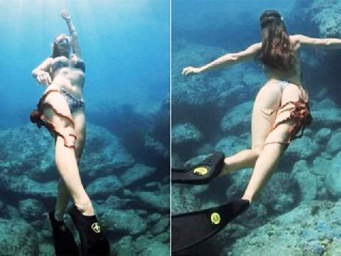 Bạch tuộc hám gái nhất hành tinh: sàm sỡ vòng 3 cô gái mặc bikini bơi dưới biển
