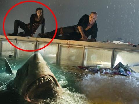 'Đứng tim' giây phút cô gái lao xuống nước làm mồi cho cá mập