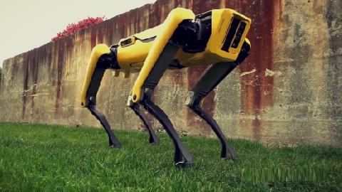 Những việc robot này có thể làm rất đáng kinh ngạc