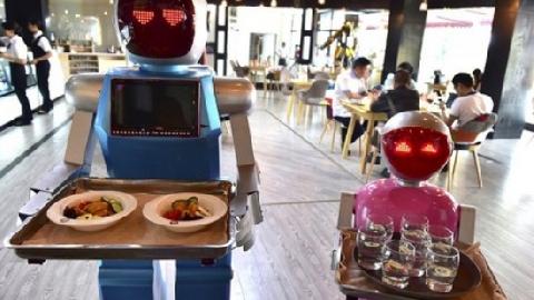 Ghé thăm nhà hàng nơi phục vụ là... Robot