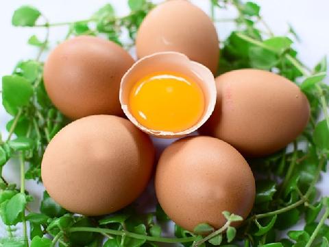 Trứng gà màu trắng tốt hơn trứng gà màu nâu?