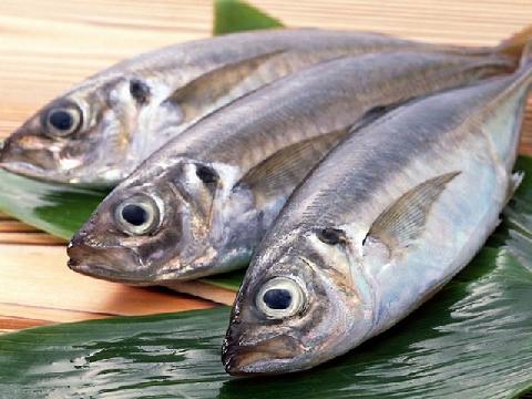 Mẹo đơn giản để nhận biết cá bị nhiễm độc