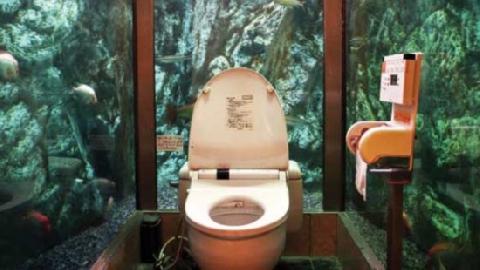Độc đáo toilet nhìn xuyên thấu ở Áo