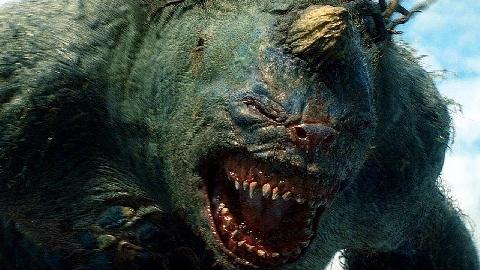 4 Quái Vật Biển có thể làm Megalodon Khiếp Sợ