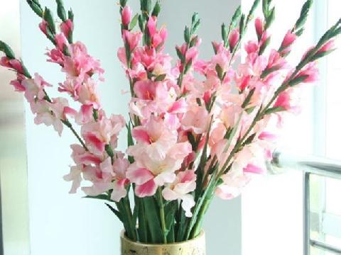 10 loại hoa phong thủy tài lộc nên chọn trong ngày Tết