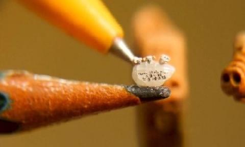 Kinh ngạc điêu khắc tượng heo trên hạt gạo siêu nhỏ!!!