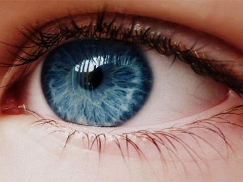 Làm gì khi bạn bị 'mỏi mắt kỹ thuật số'