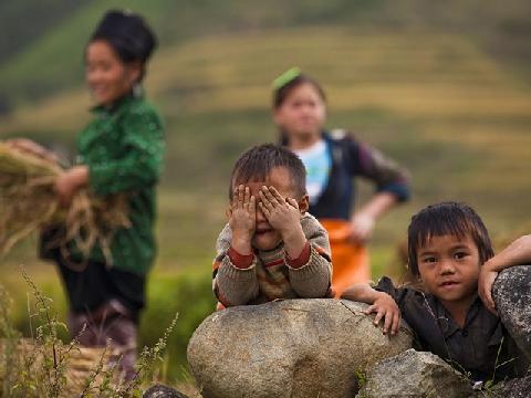 5 câu chuyện về trẻ em lay động trái tim dân mạng