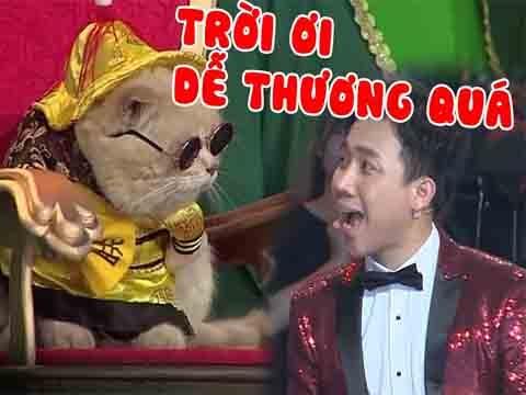Hoàng Thượng Mèo khiến Trấn Thành, Việt Hương phát cuồng