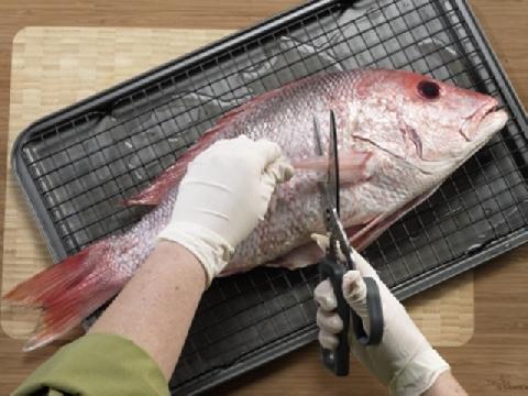 Hãy làm cá theo cách của bạn