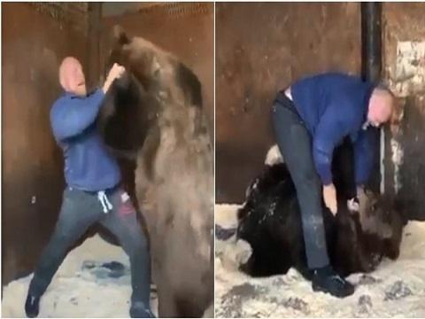 Võ sỹ MMA chui vào lồng sắt quật ngã chú gấu 250kg!