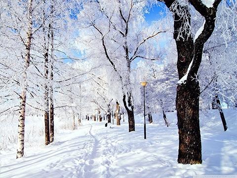 Tuyết đang rơi hay tuyết đang tan_ lúc nào lạnh hơn