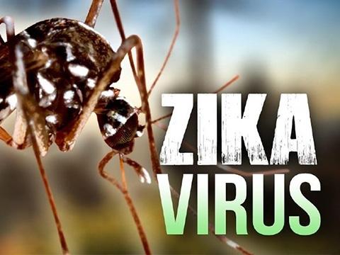 Nhìn lại lịch sử: Zika – loại virus đáng sợ ảnh hưởng tới trẻ em