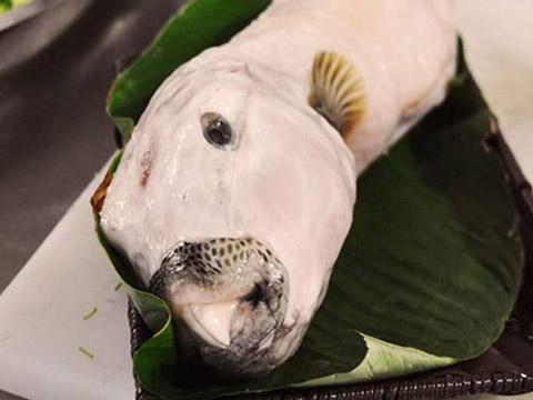 Người đàn ông hôn mê sâu vì ăn cá mặt thỏ